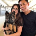 Couple with a German Shepherd puppy